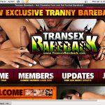Free User For Transex Bareback