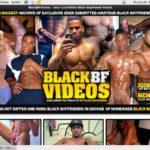 Black BF Videos Password Username
